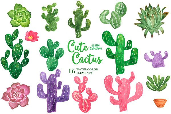 Cactus clipart. Watercolor illustrations creative market