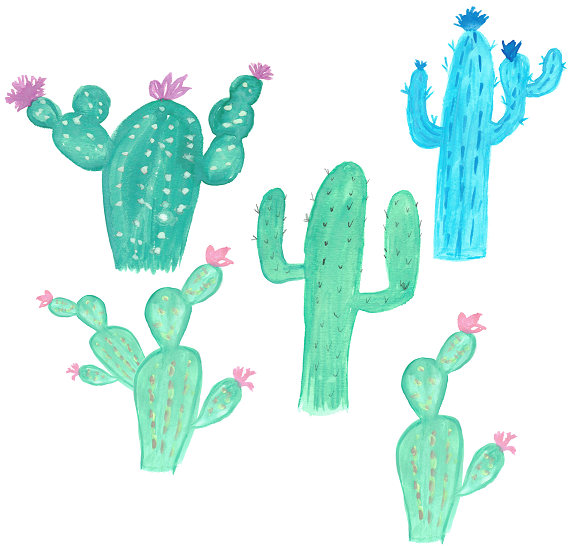 Cactus clipart blue. Watercolor cacti blooming tropical