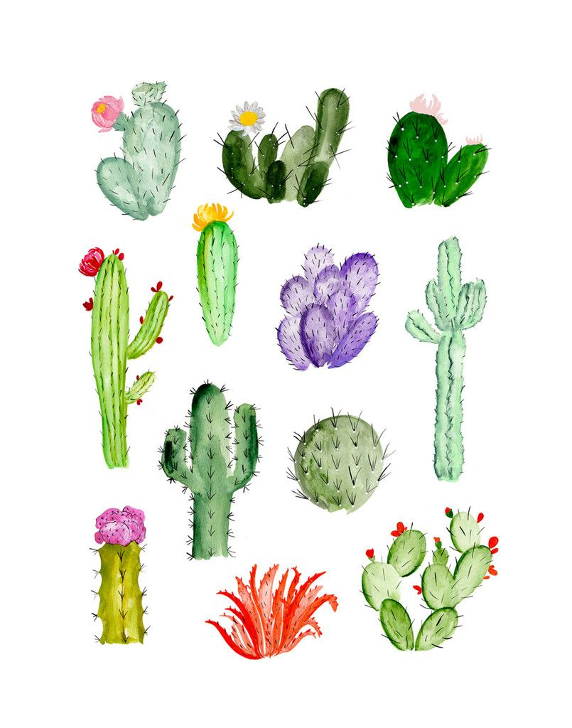 Cactus clipart easy. Simple drawing at getdrawings