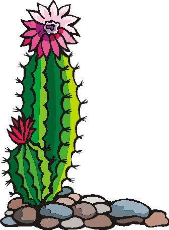 Cactus clipart flower. Gallery for image drawing
