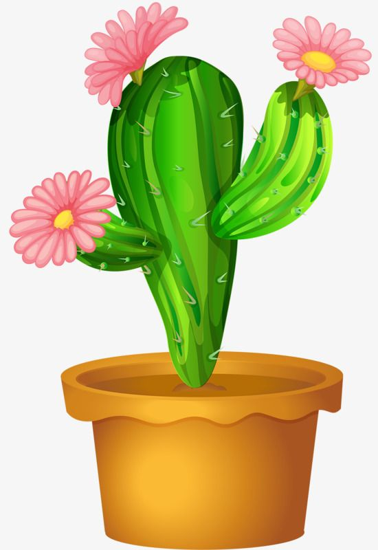 Cactus clipart flower. Hand painted green flowering