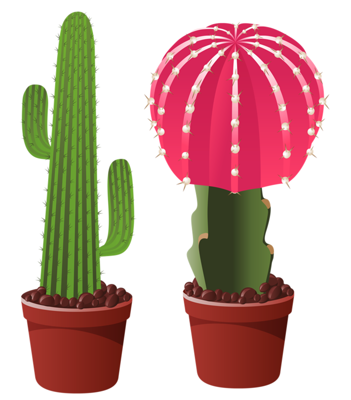 Cactus clipart potted. Picture my garden valley