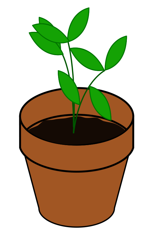 Cactus clipart toon. Plant black and white