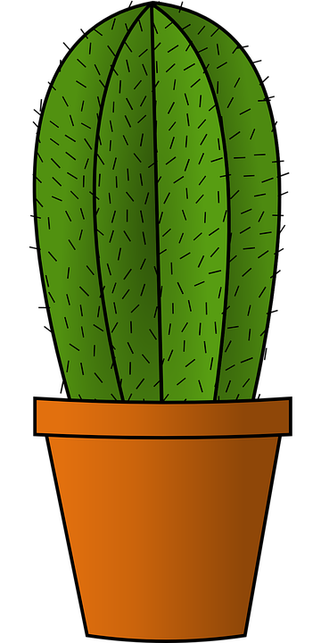 Cactus png clipart. Image free picture download