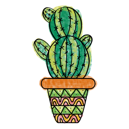 Cactus mexicano png. Hand drawn colorful multiple