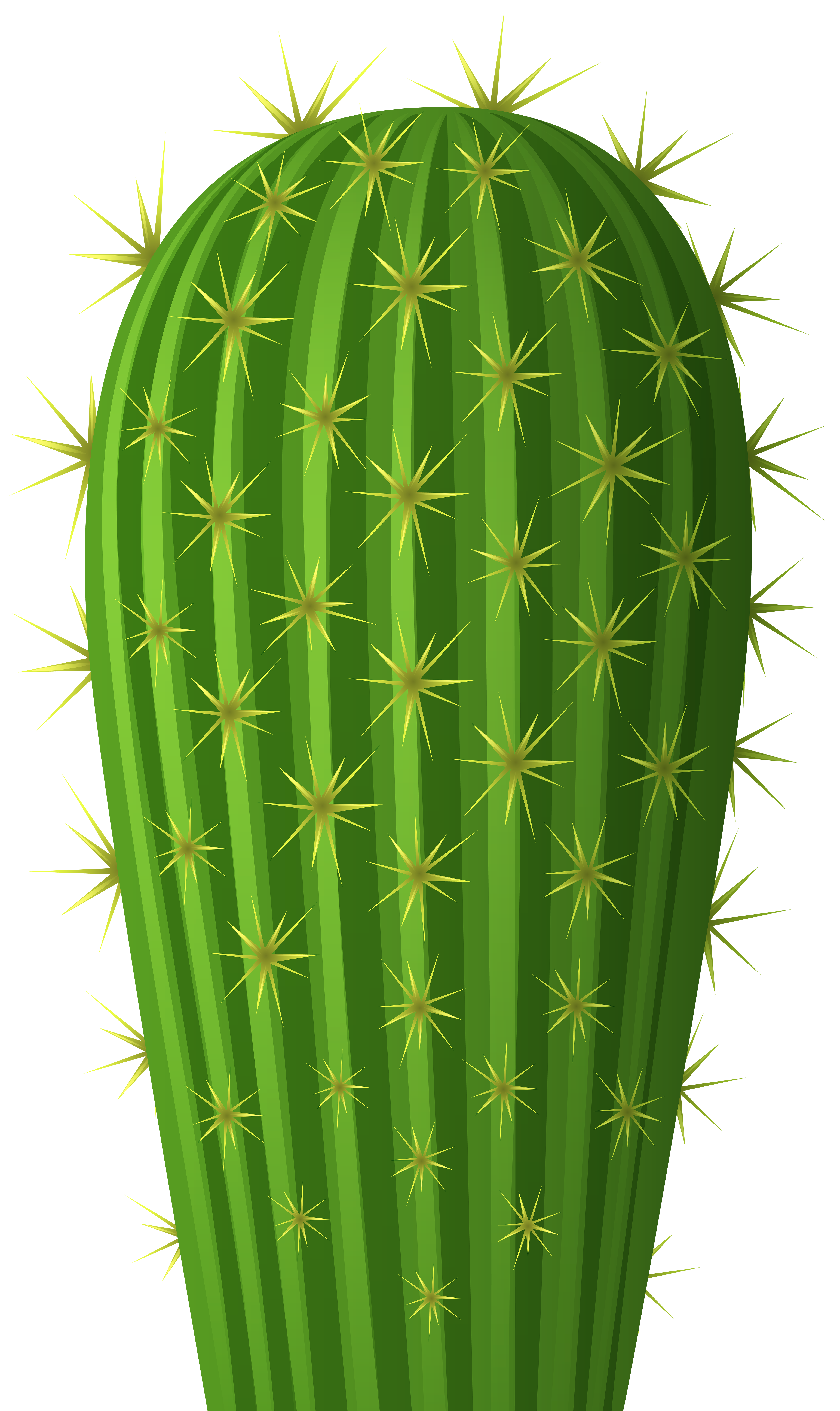 Cactus png. Clip art image gallery