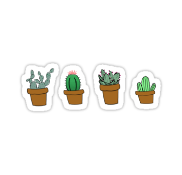 Cactus png hipster. Drawing stickers by youtuber