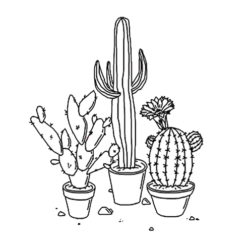 Cactus png tumblr. Collection of drawing