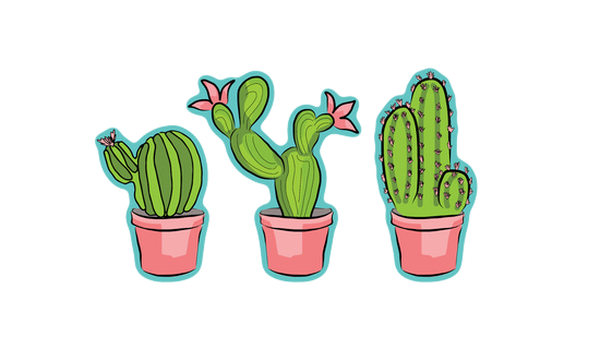 Cactus png tumblr. Clipart frames illustrations hd