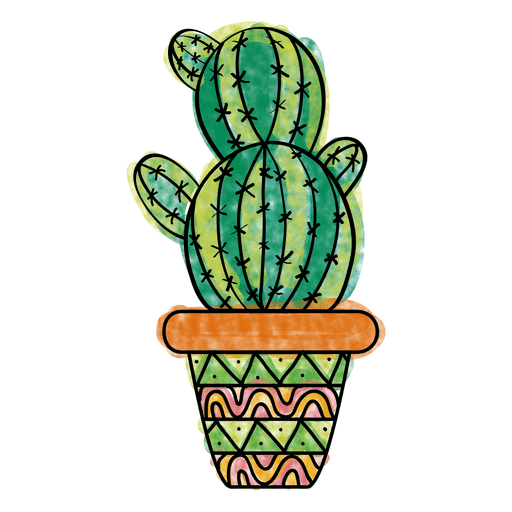 Cactus vector png. Hand drawn colorful multiple