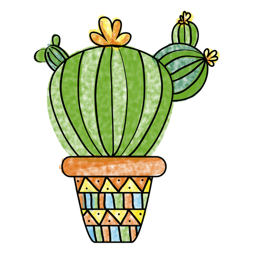 Cactus water color png. Hand drawn watercolor and