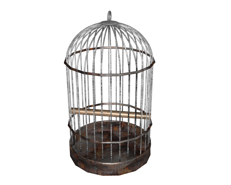 Birdcage round by madetobeunique. Transparent cage jpg black and white