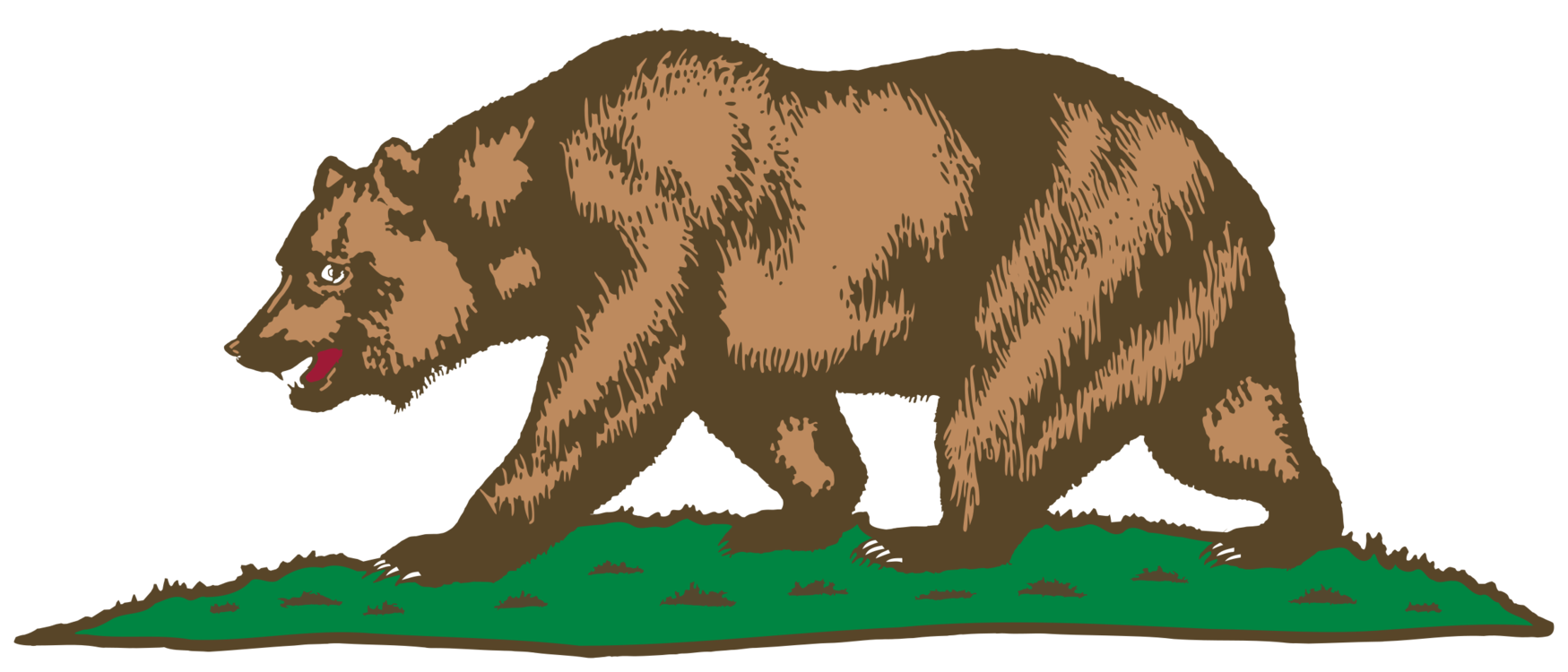 Calif transparent bear. California grizzly drawing free