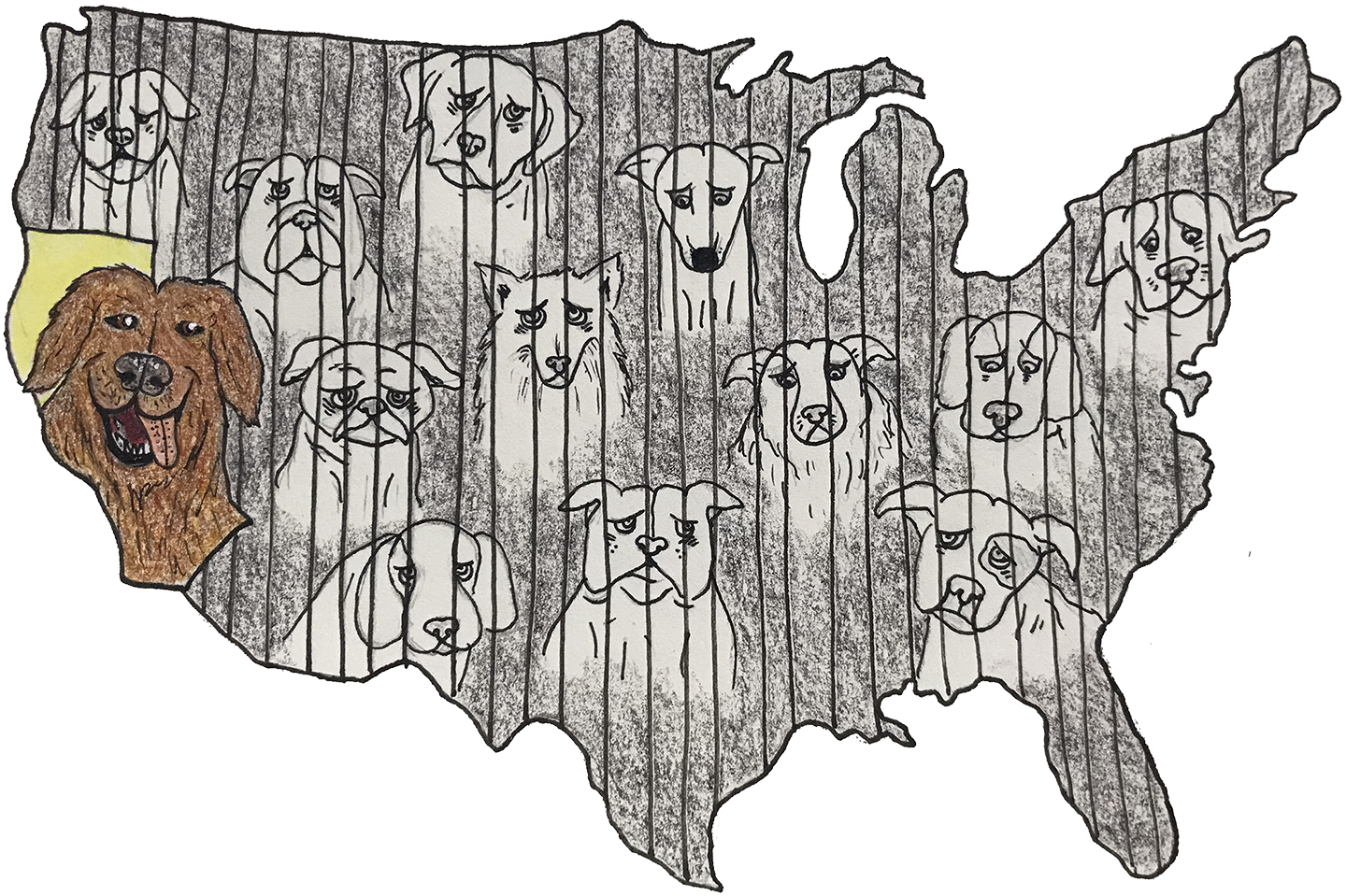 Trade drawing dog shelter. Pet rescue bill furthers