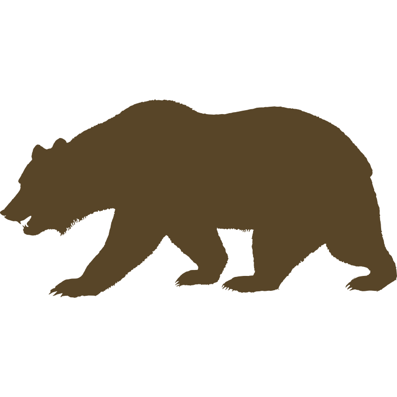California bear outline print. Grizzly drawing fierce image black and white stock
