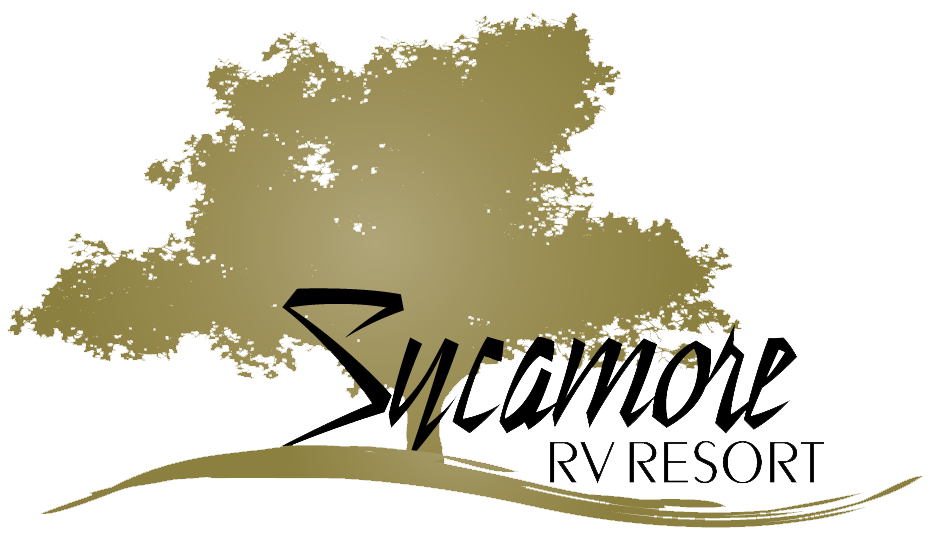 California sycamore png. Rv resort il adventures