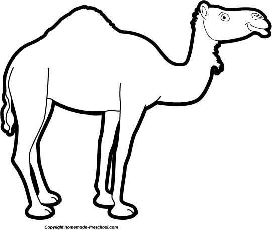 Camel clipart african. Of free google search