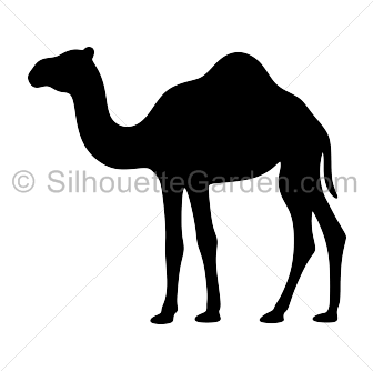 Drawing camels decorative. Camel silhouette clip art