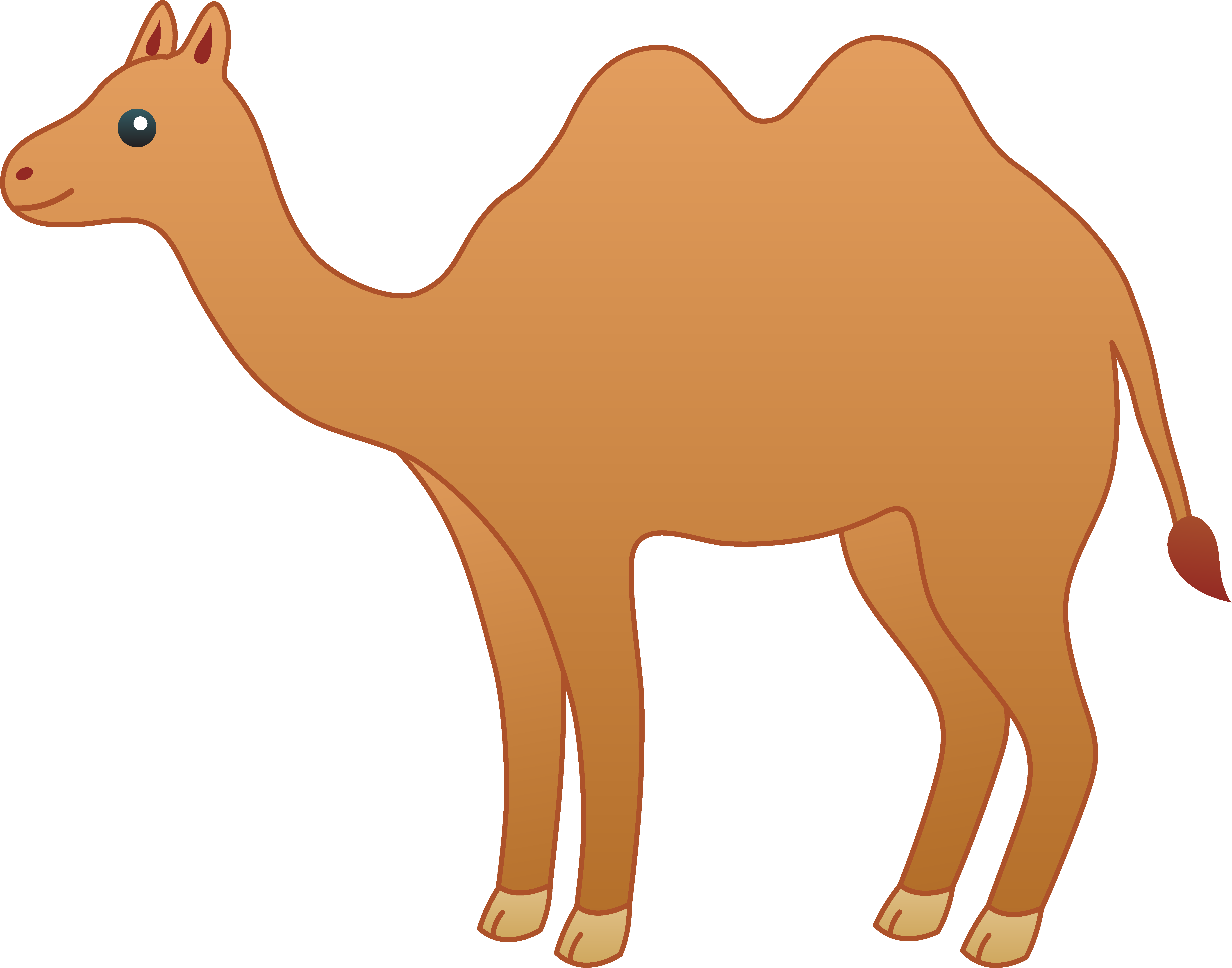 drawing camels simple