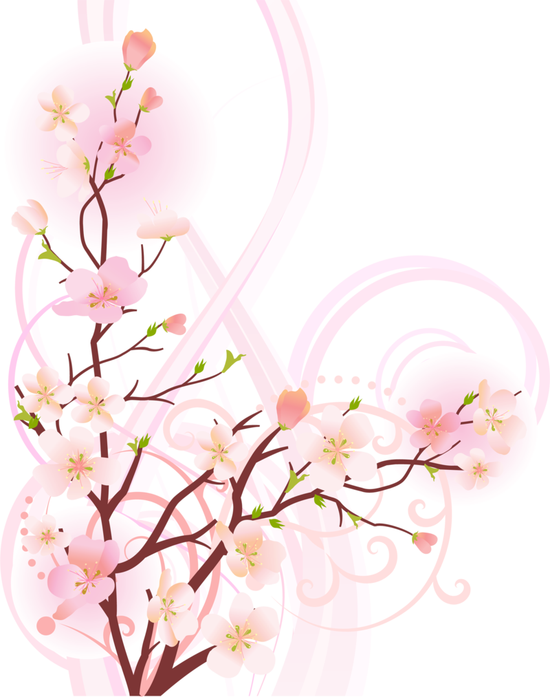 Camera clipart floral. Pin by dora bivins