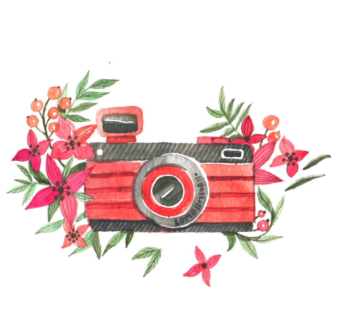 Camera clipart floral. Ftestickers watercolor flowers pink