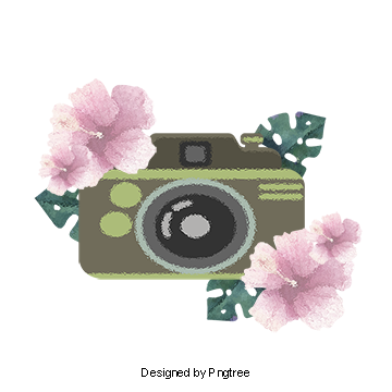 Camera clipart floral. Flowers rose reminiscence painted