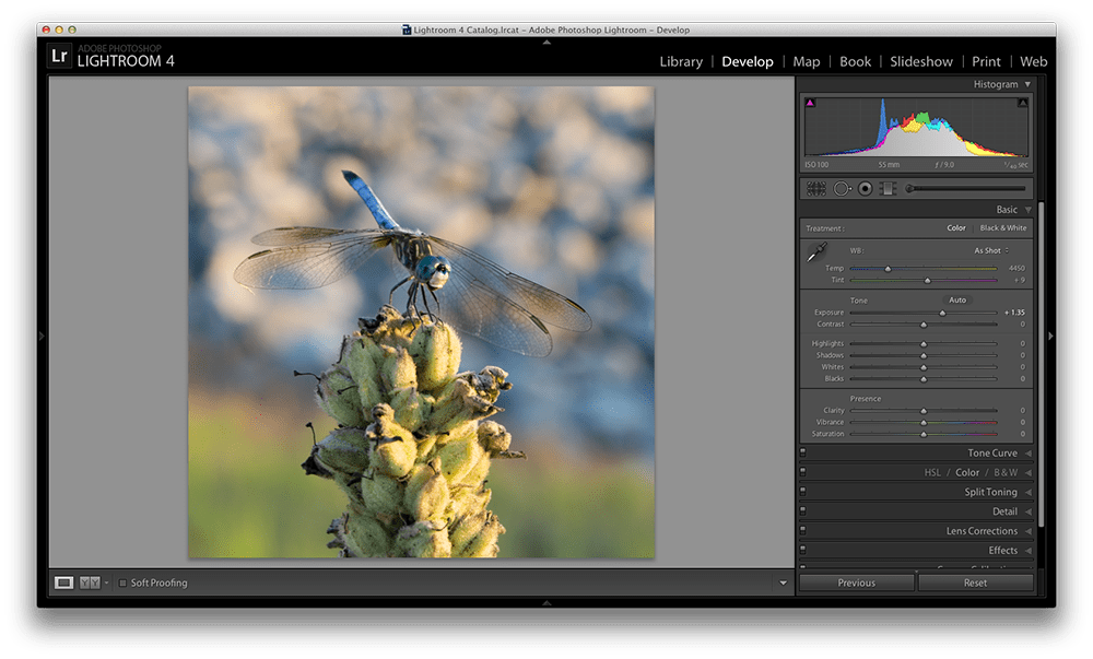 Can lightroom edit png. Master these five sliders