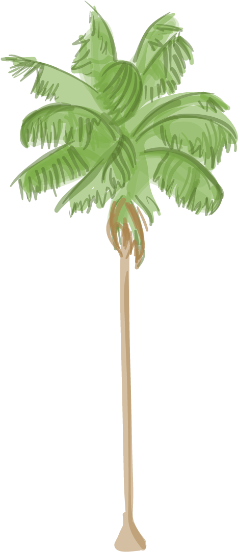 Canary palm png. Download hd island date