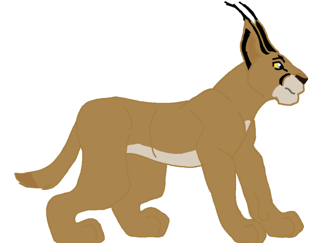 Lynx vector caracal. By andrewshilohjeffery on deviantart