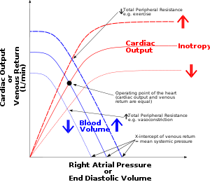 Cardiac vector electrical mechanical. Hexaxial reference system wikivisually