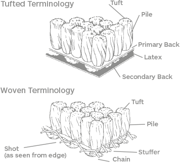 Glossary easy to understand. Carpet drawing vector freeuse download
