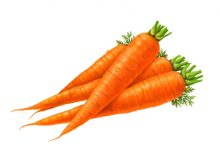 Carrot clipart. Free clip art images
