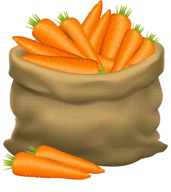 Carrot clipart carrott. Meme and quote inspirations