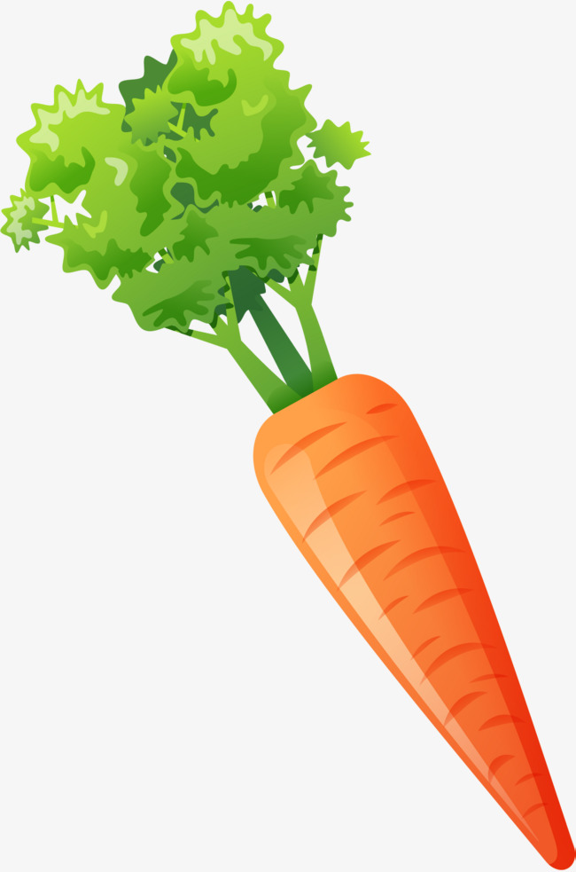 Carrot clipart red carrot. Hand painted watercolor gules
