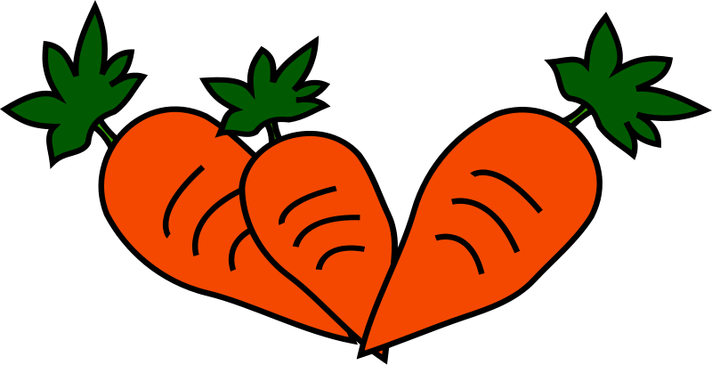 Carrots clipart three. Free pics of download