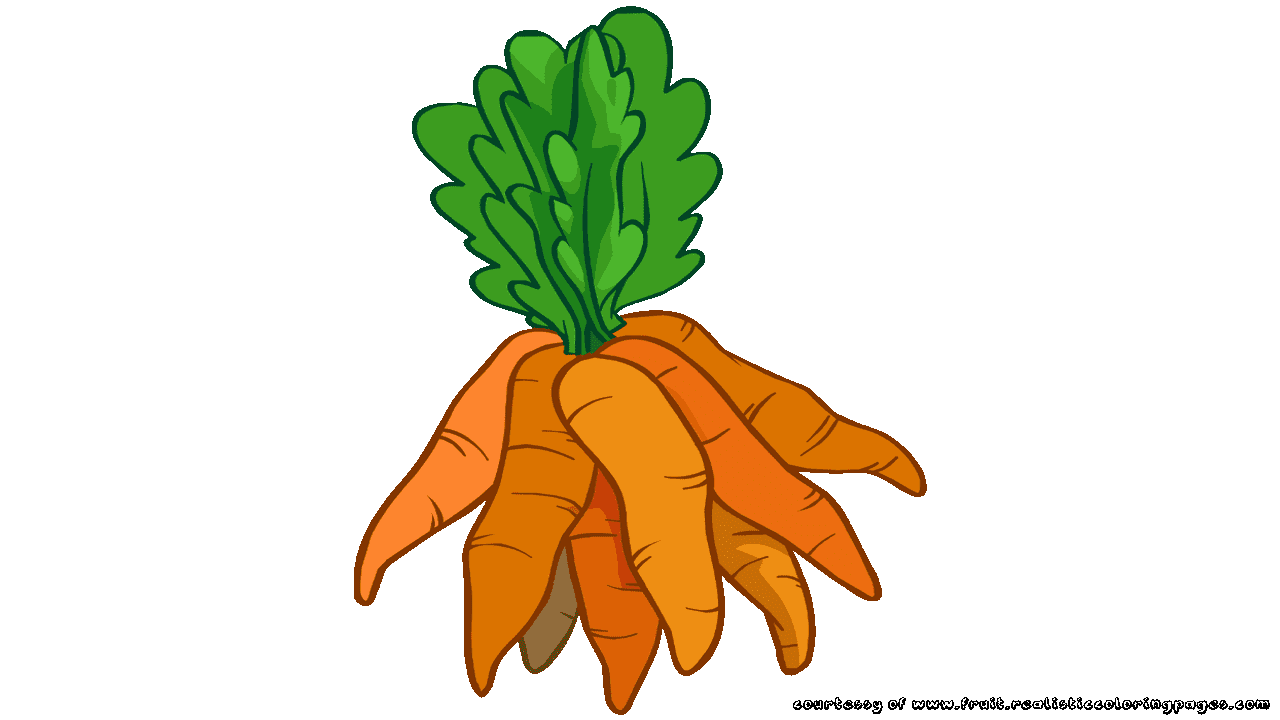 Vector vegetables painted. Field clipart carrot clip