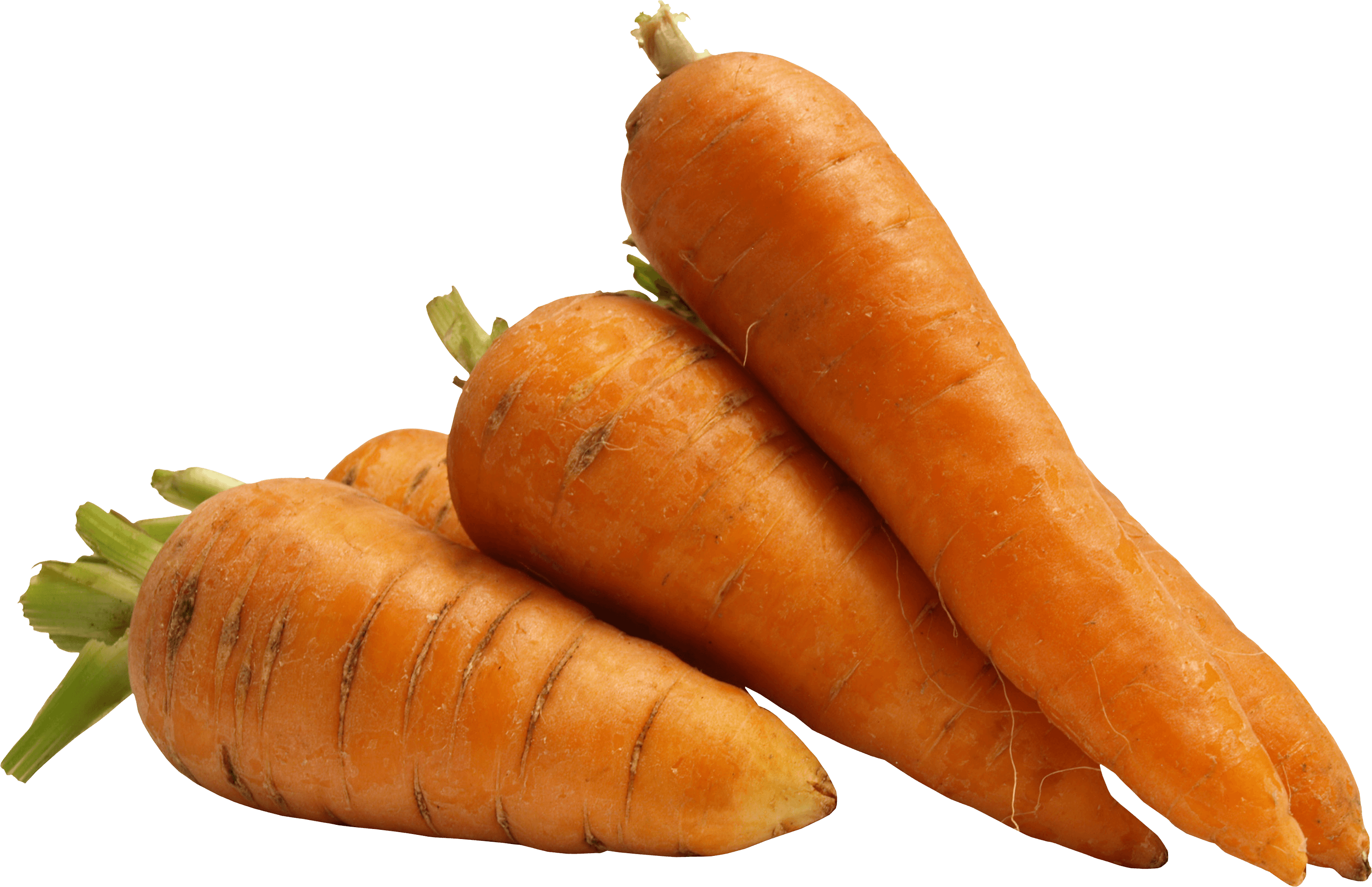 Carrots transparent. Carrot hd png images