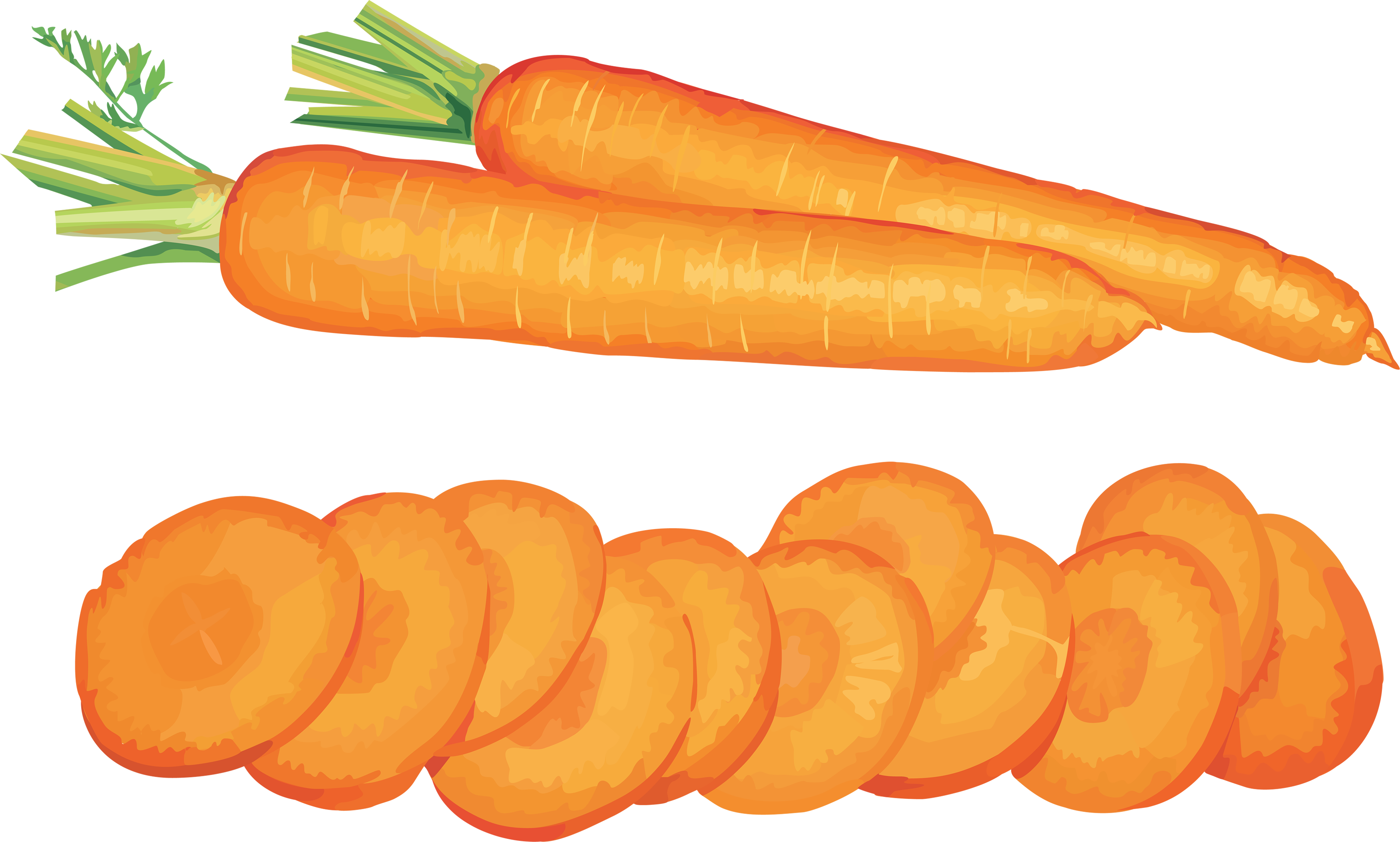 carrots png cut