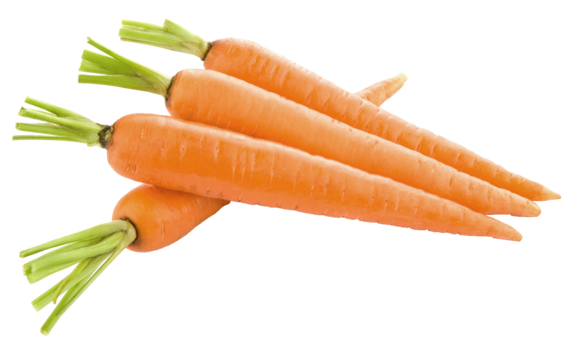 Carrots png bowl. Foods you should