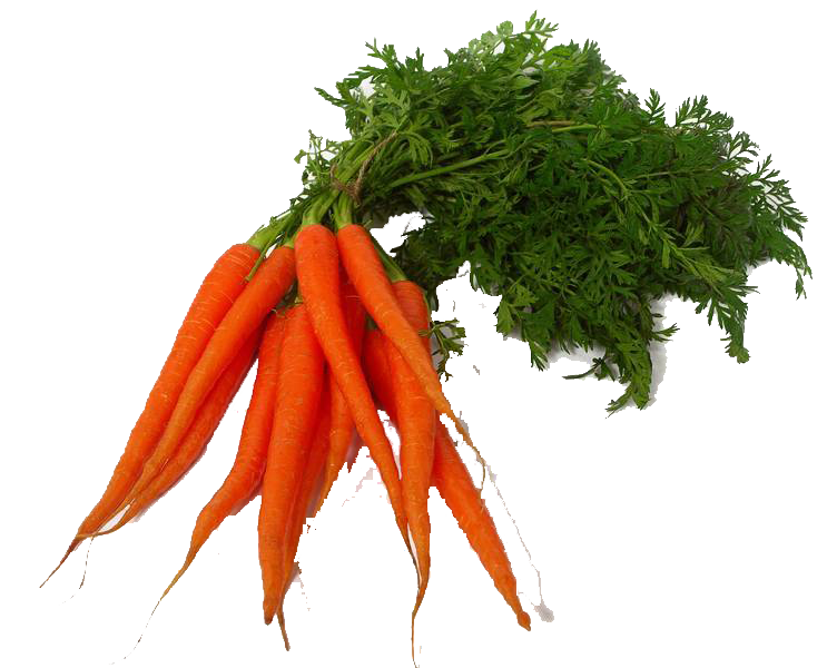 carrots png red