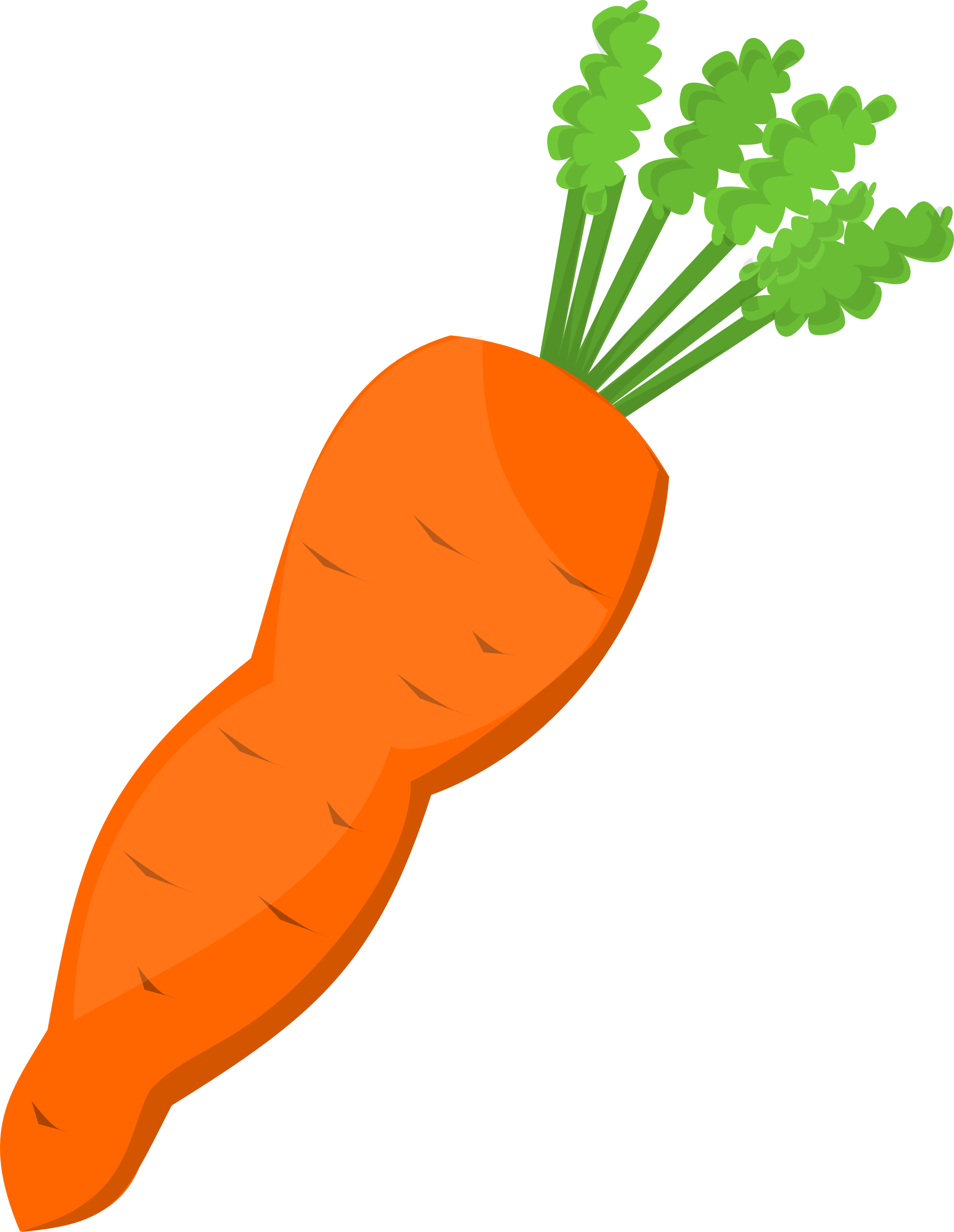 Carrots png garden. Collection of carrot