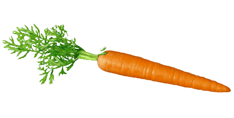 Carrots transparent. Carrot background image