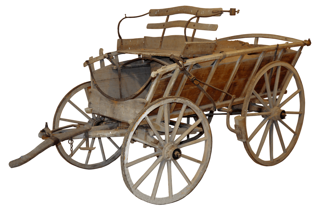 Hazelnut drawing carriage. Coach old rural horse