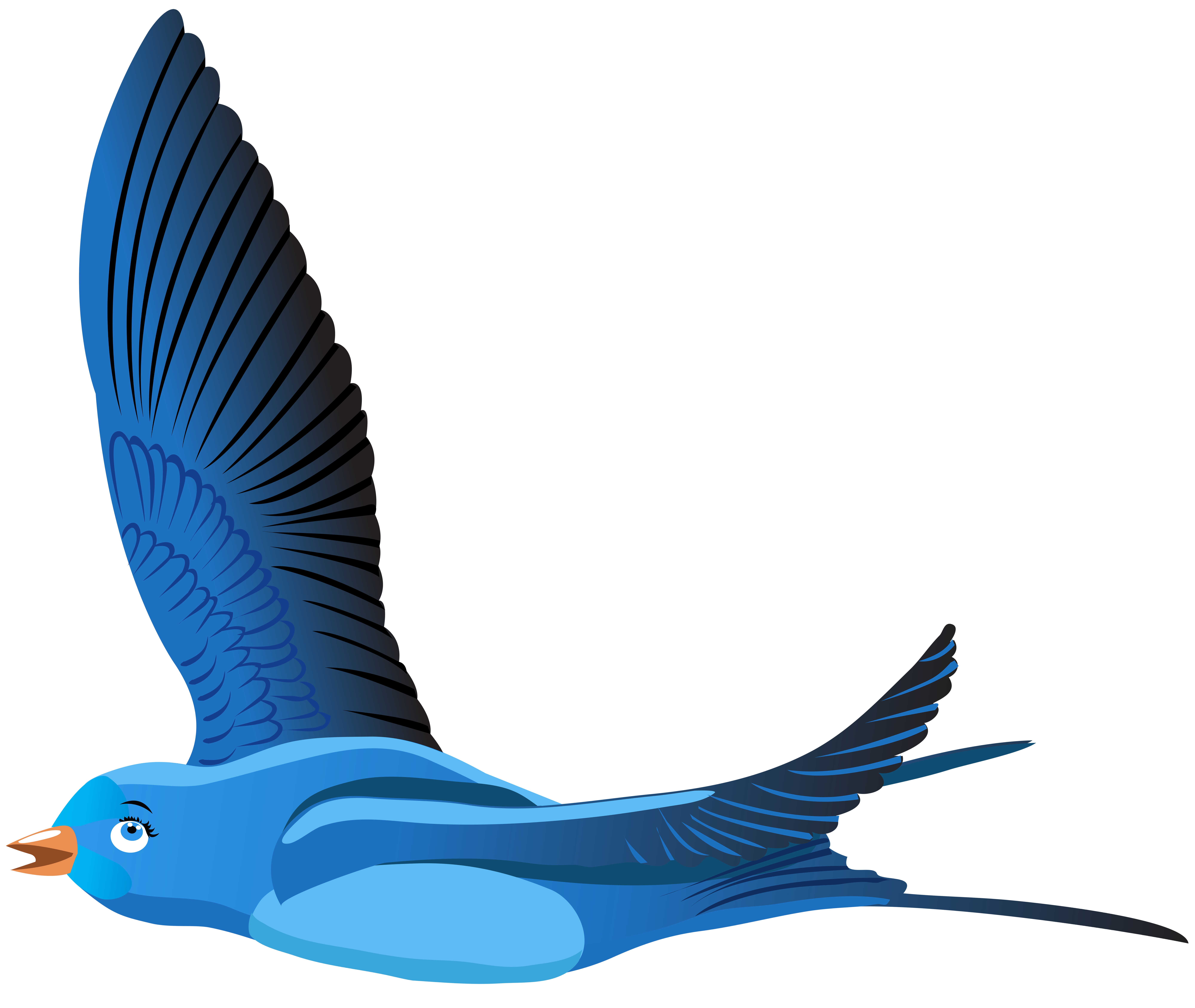 Cartoon bird png. Blue transparent clip art