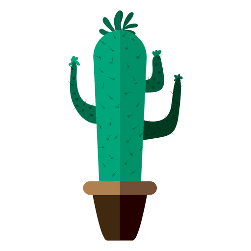 drawing cactus plant