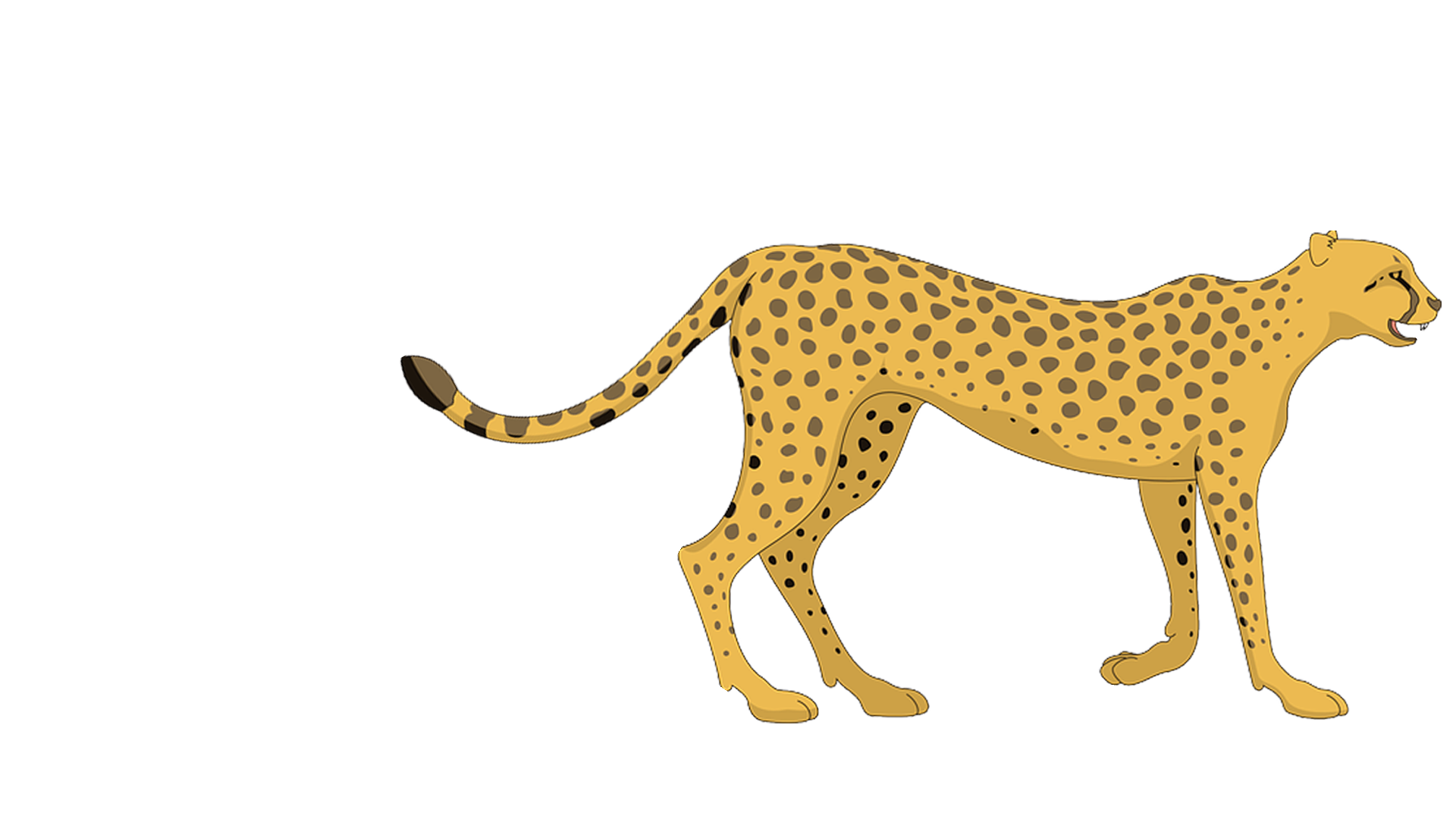 Cartoon cheetah png. Leopard clip art transprent