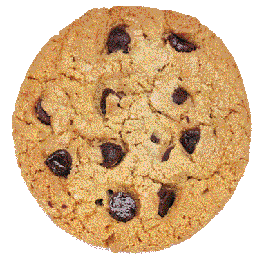 cookie png watercolor