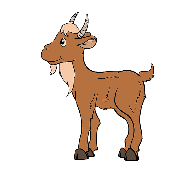 Drawing goats. Goat cartoon transprent png