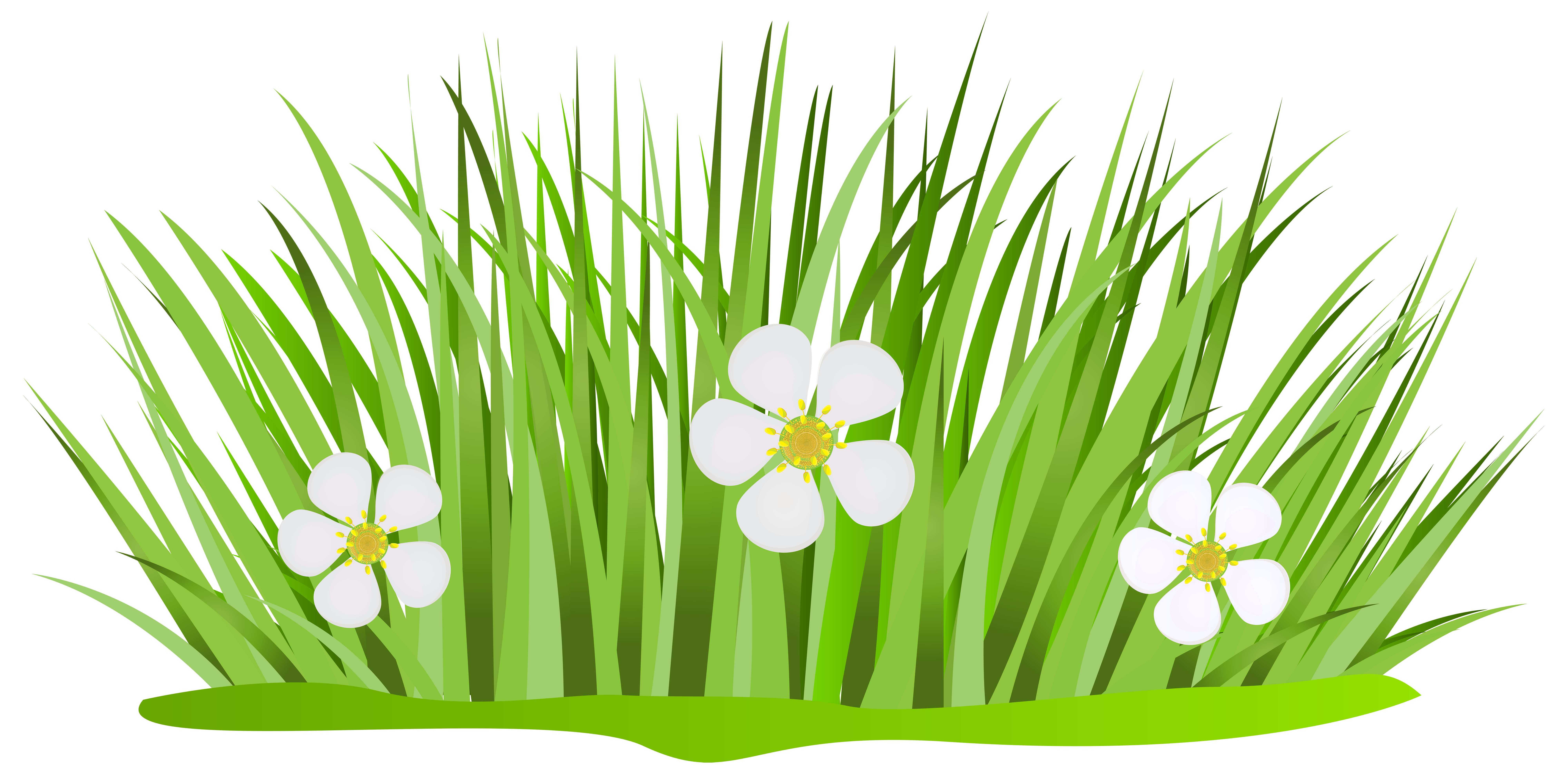 Grass png cartoon. Images in collection page