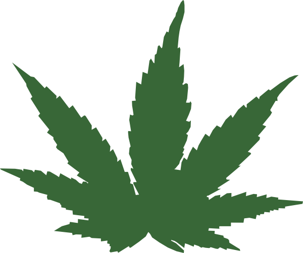 Weeds drawing symbol. Cartoon weed leaf png